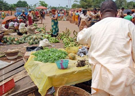 Abavo Market in Delta State, Nigeria; Photo courtesy: Robert Prather