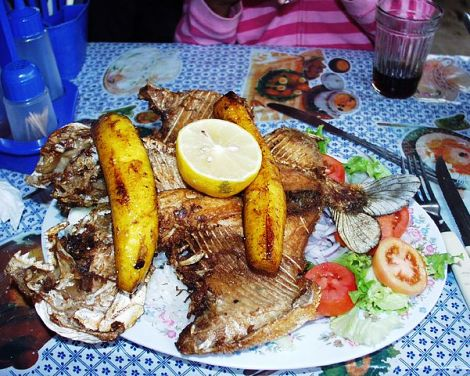 Grilled pacu over rice with sides of lettuce, tomato, onions, and plantains, with a lemon-half garnish. Photograph taken in Villa Tunari, Bolivia by Marc Alan Davis.