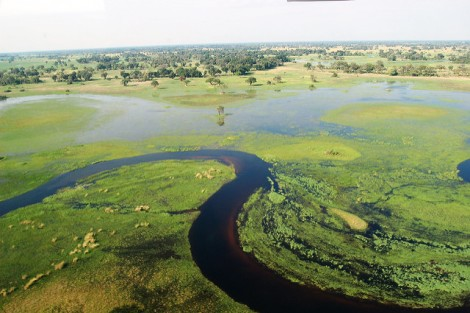 Okavango Delta in Botswana. Photo credit: Joachim Huber