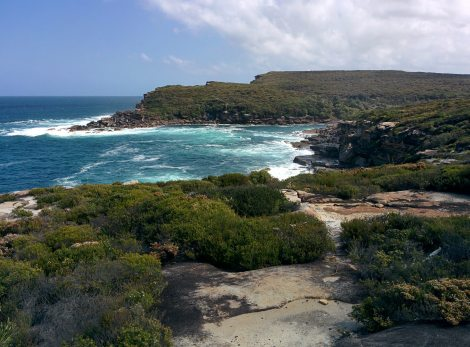 Sydney Cruise - Royal National Park